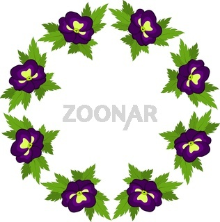 Circle of purple pansies on a white background