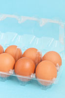 Chicken eggs in the plastic package