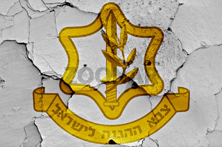 flag of Israel Defense Forces painted on cracked wall
