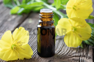 A bottle of evening primrose oil with fresh blooming evening primrose