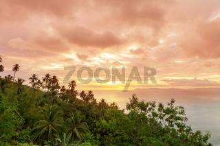 Tropical landscapes