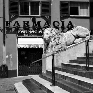 Old pharmacy and marble lion in Genoa