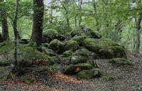 Natural landmark