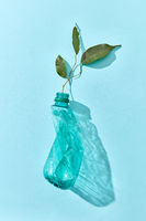 Green branch grows from crushed plastic bottle.