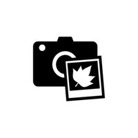 Camera and fall photography. Isolated icon. Technology vector illustration