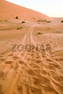 footprints in sand, photo as background