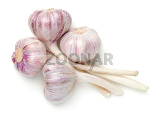 Young Garlic Isolated On White Background