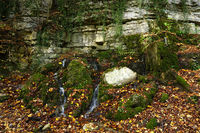 Near the Guetersteiner Waterfall, Swabian Alb,