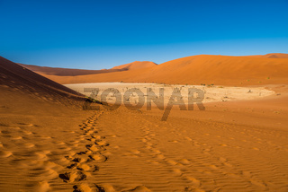 Red sand dunes in Deadvlei, Sossusvlei, Namib-Naukluft National Park, Namibia