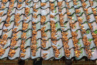 Old farmhouse with roof tiles covered by fallen leaves