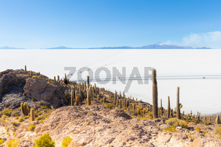 Bolivia Uyuni panorama of salar from Incahuasi island