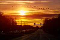 Cars moving on the road in early morning view to the traffic with trafficlights transport