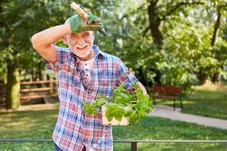 Senior Mann mit Gartengerät und Basilikum