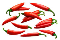 Paprika chile peppers, whole pods, paths