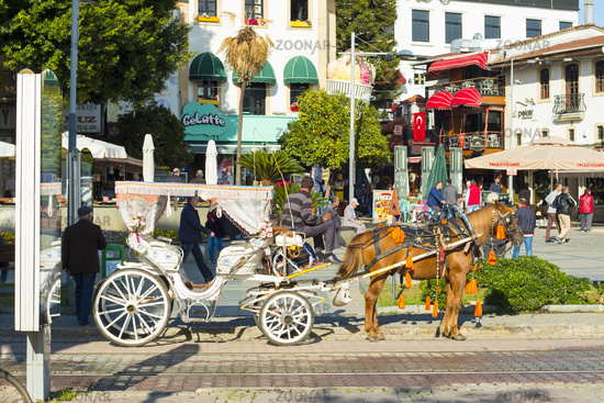 Tourist Horse Drawn Carriage Side View Antalya