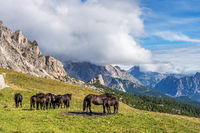 Italy Dolomites moutnain - Passo di Giau in South Tyrol