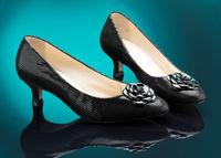 Female Shoes On Elegant Background