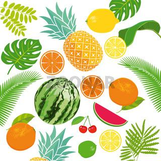 frisches Obst.jpg