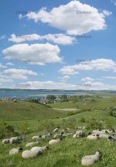 View to Village of Gager on Ruegen at baltic Sea,Mecklenburg western Pomerania,Germany