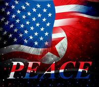 Usa North Korea Peace Love Flag 3d Illustration