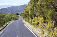 Road in Paul da Serra in Madeira