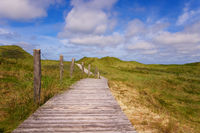 Dune hiking trail