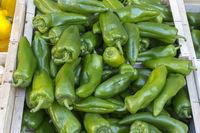 Frische grüne Paprika in einer Kiste auf einem Markt