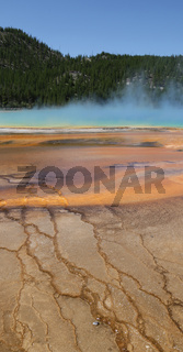 yellowstone national park the nature