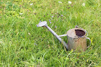 Great metal watering can in the grass