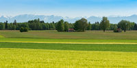 Panoramic scenic Alpine view with fresh spring meadows and snowy mountain peaks