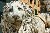 Marble lion -  at San Lorenzo Cathedral