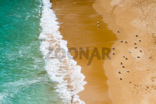 Strandausschnitt