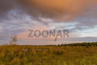 Goldenstedter Moor bei Sonnenaufgang