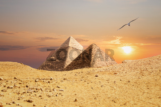 The Pyramids of Giza, view from the sand-dune