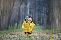 Children are walking in the autumn park