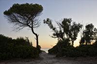 Sardinia Alghero-Beach