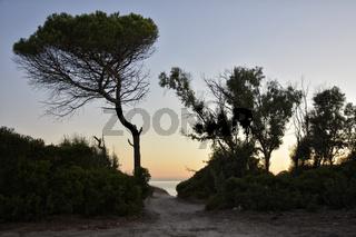 DSC2923JX-Sardinien-Alghero.jpg