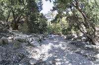 Samaria Canyon, Crete