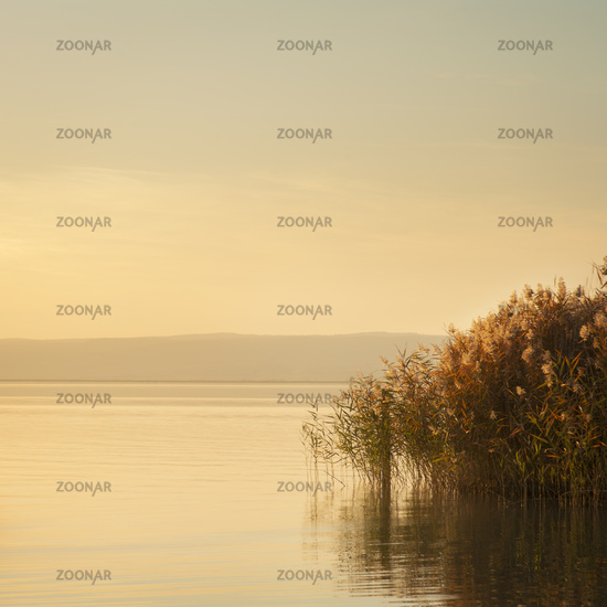Sunset and soft light on lake neusiedl in Burgenland