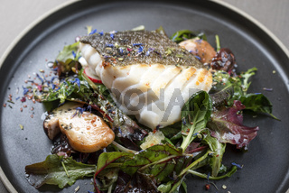 Fried Danish skrei cod fish filet with porcini mushroom and lettuce as closeup on a modern design plate