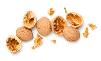 Walnut Shells Isolated On White Background