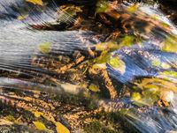 Lake District - Aira Force Waterfall