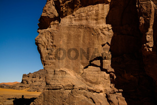 Cow - Cave paintings and petroglyphs at Boumediene ,Tassili nAjjer national park, Algeria