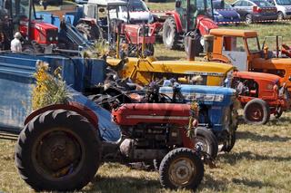 Bauernmarkt in der Provence