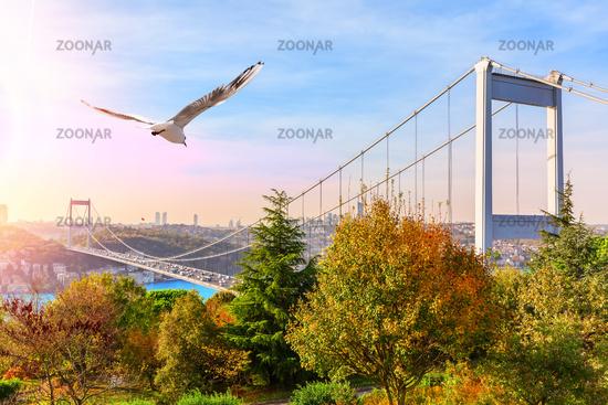 Sultan Fatih Mehmet Bridge, view from the park, Istanbul