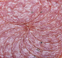 Salami slices on white background