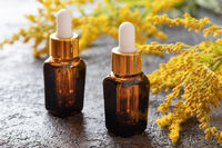 Bottles of goldenrod essential oil with fresh plant