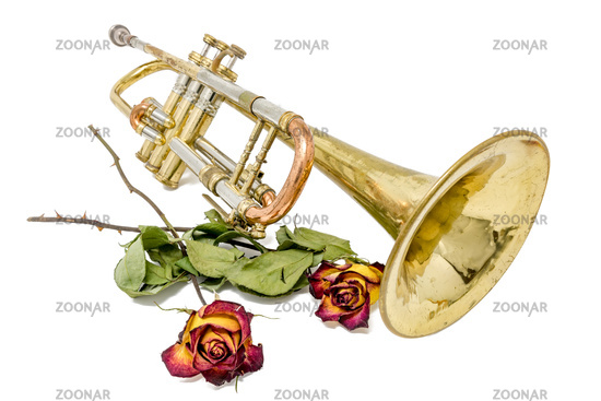 Old rusted trumpet with dried roses isolated on white