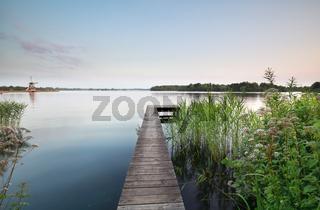 wildflowers by pier on big lake