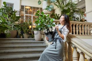 Floristin bei Lieferung einer Grünpflanze als Deko